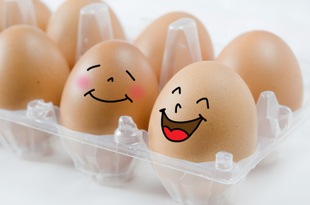 happy  brown egg in  the package on white Banco de Imagens - 23747105