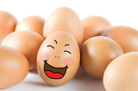 happy  brown egg with many friend   chicken eggs   photo
