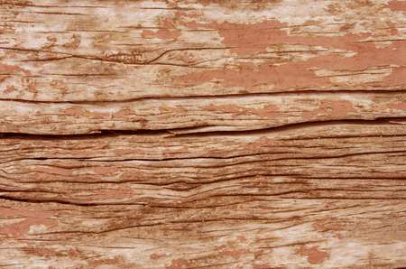 close up brown wood texture , old wooden background . photo