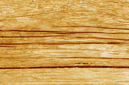 close up old wooden background , brown Wood texture photo