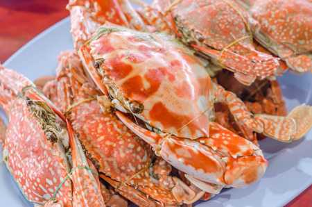 crab: steamed flower crab or blue crab, blue manna crab, sand crab