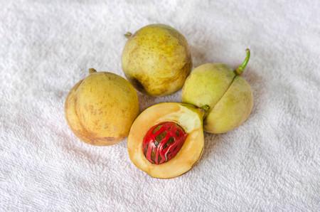 Nutmeg (Myristica fragrans Houtt.), Thailand herbs with medicinal properties