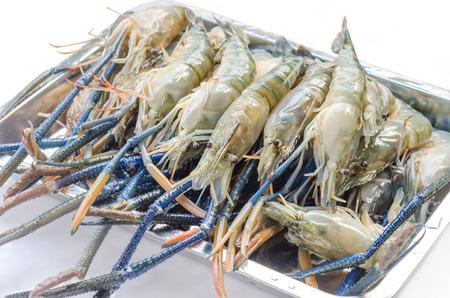 giant  river prawn is ready to grill ( Macrobrachium rosenbergii )