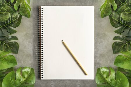 Top view and flat lay with blank sketchbook and green leaves over cement background