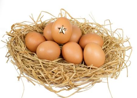 star egg Stock Photo - 12465410