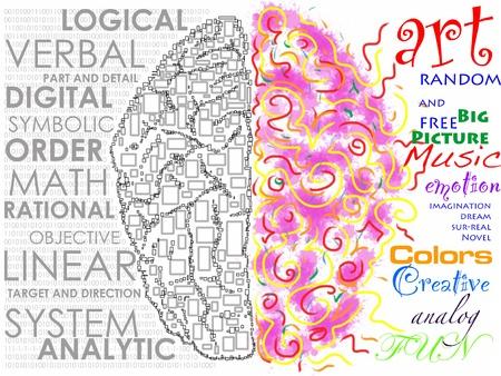 cerebro humano: Cerebro izquierdo y derecho ilustraci�n de la funci�n Foto de archivo