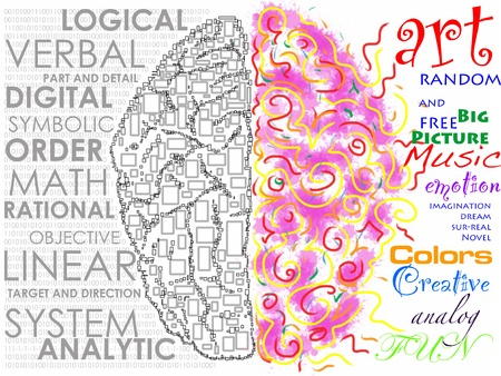 brainy: Left and Right brain function illustration