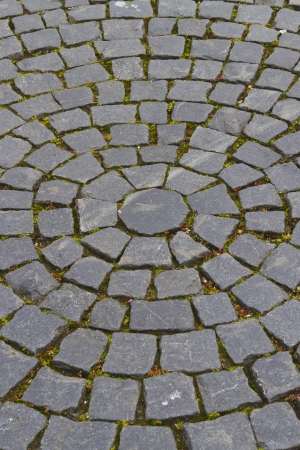 Old grey pavement of cobble stones in a circle pattern in St  Petersburg Palace Stock Photo