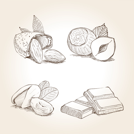 pistachio: Nuts and Chocolate Illustrations Illustration