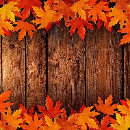 Uitgegoten op droge bladeren in de herfst hout