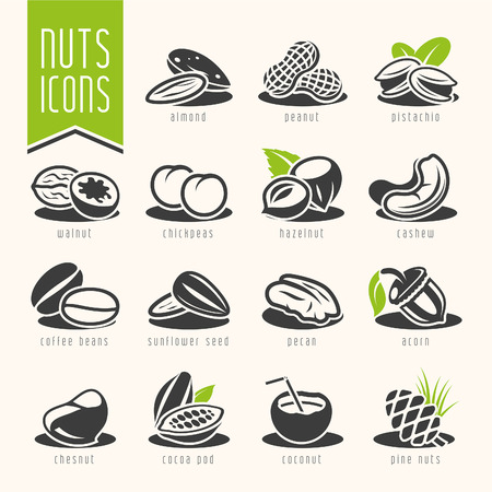 hazelnuts: Nuts icon set.