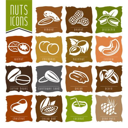 cacahuate: Nueces conjunto de iconos - 2