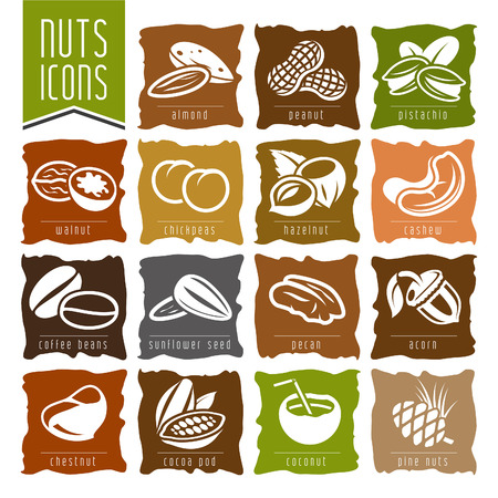 Nuts icon set - 2 Vector
