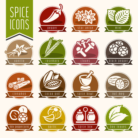 indian spice: Spice icon set Illustration