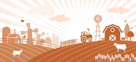 grain fields: Farm Illustration