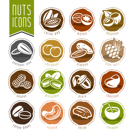 filbert nut: Nuts icon set Illustration