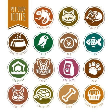 tortuga: Mascotas, veterinario, tienda de animales conjunto de iconos
