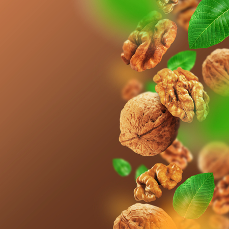 Walnuts and leaves falling from the air Stock Photo