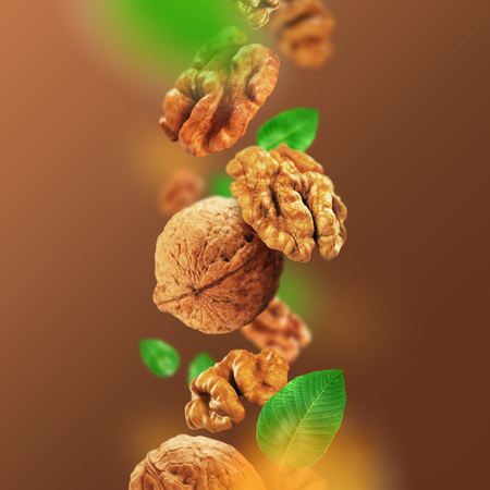 Walnuts and leaves falling from the air Stockfoto
