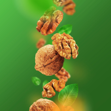 Walnuts and leaves falling from the air Banco de Imagens