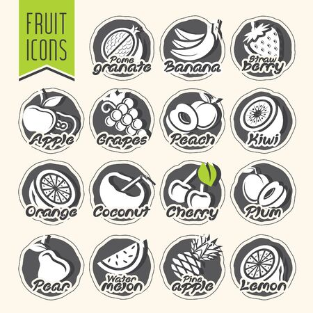Ready design vector fruit icon set