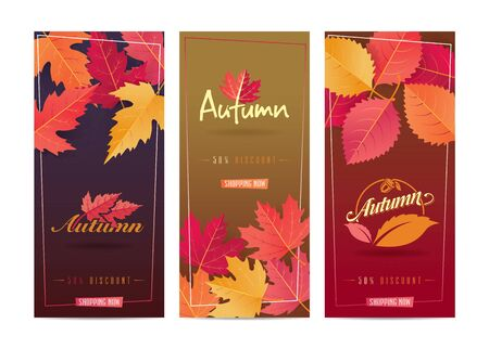 Autumn Seasonal Discount Card and Vector Web Banner
