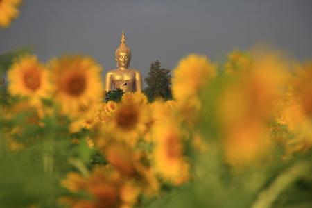 fidelidad: Buda es realmente maravilloso Foto de archivo