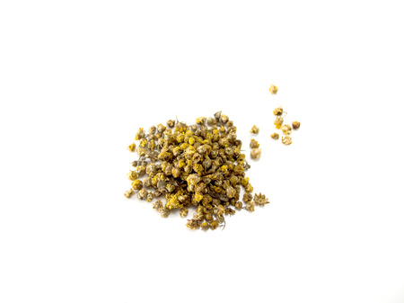 chamomile flower: Isolated dried chamomile tea flower
