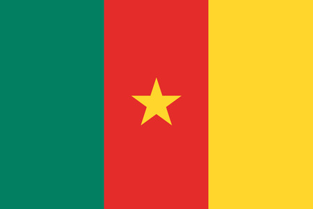 cameroon: Flat Cameroon flag background vector illustration