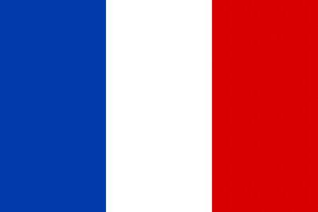 spangled: Flat France flag vector background