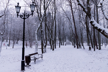 lonelyness: Snowy park in the twilight Stock Photo