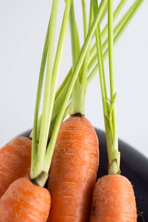 detail of bunch: Detail of bunch of carrots
