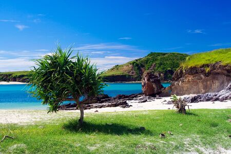 Isolated lonely lagoon with dark blue water, white sand and isolated tree on Lombok, Indonesia
