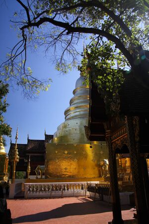 Pagoda with tree in Wat Phra That Doi Suthep, Chiang Mai