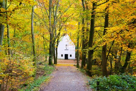 View over path in german beech forest in autumn colors on isolated white chapel - Viersen (Suechteln), Germany 免版税图像
