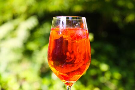 Close up of red orange cocktail in wine glass with ice cubes against green plants background