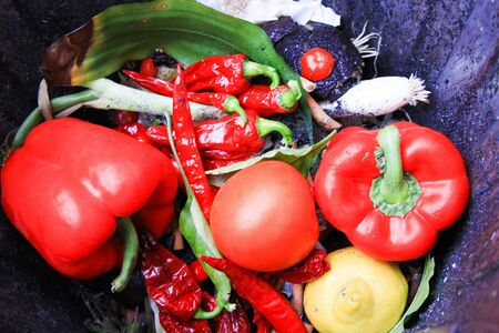 Wastage of fresh food: Close up of fresh red vegetable (bell pepper, tomato, chilis) in waste bin