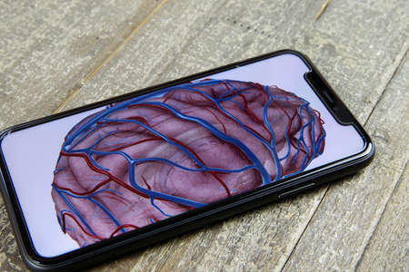 Viersen, Germany - June 28, 2020: View on isolated mobile phone with drawing of human brain on display (focus on phone)