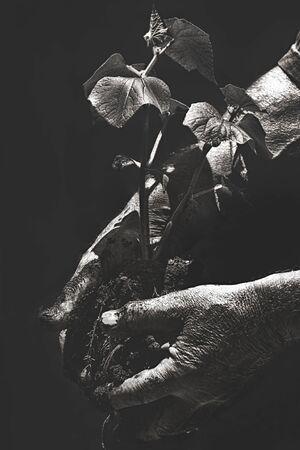 Dirty Hands Reklamní fotografie