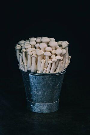 White Shimeji mushrooms in a bucket