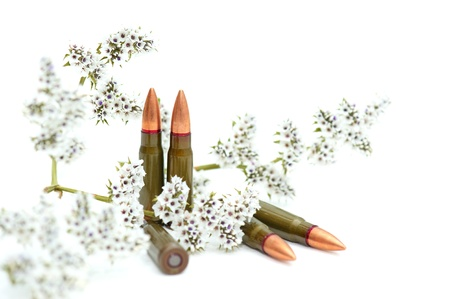 cartridges: Fighting cartridges with a flower branch Stock Photo