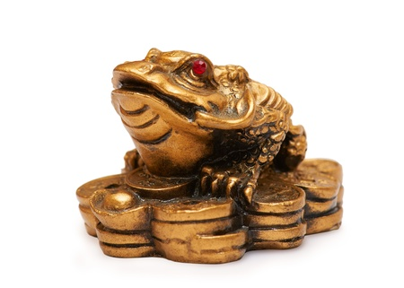 Feng Shui Frog from China photo