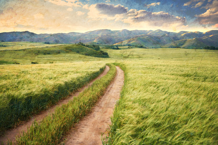 Vintage picture of the road in a barley field. Stockfoto
