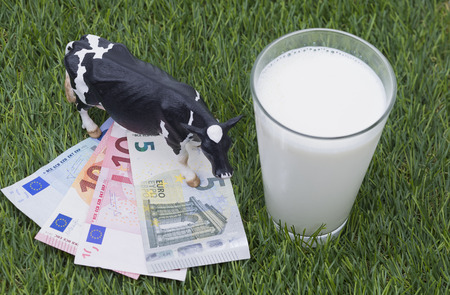 Image shows some banknotes on grass with mild and a cow