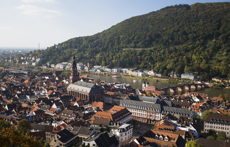View over rooftops of Heidelberg