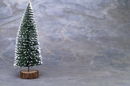The image shows a model tree on grey slate Standard-Bild