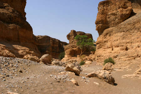 shady: Gorge called Sesriem Canyon in the namibian desert with a dry riverbed
