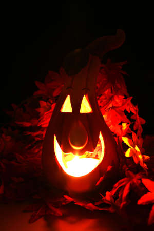 halloween pumpkin lantern shining in the dark photo