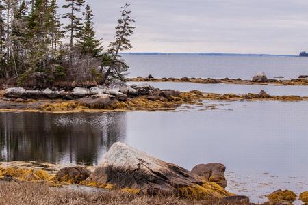 nova scotia: rugged Nova Scotia coast scenery