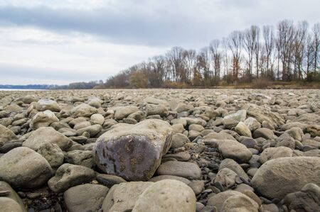 The riverbed of the Rhine at low tide. 免版税图像